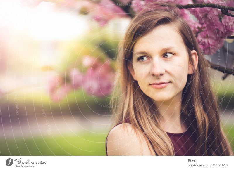 Frühlingshaft. Mensch feminin Junge Frau Jugendliche Erwachsene Gesicht 1 13-18 Jahre Kind 18-30 Jahre Natur Pflanze Sommer Schönes Wetter Baum Blüte