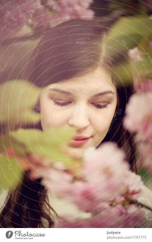 Blühender Bilderrahmen Mensch Frau Natur Jugendliche Pflanze schön Junge Frau ruhig 18-30 Jahre Gesicht Erwachsene Umwelt Frühling Blüte natürlich feminin