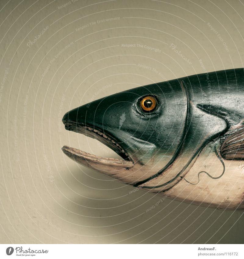 Holzkopf Wasser Meer Tier See Mund Fisch Fluss Dekoration & Verzierung Gebiss Angeln Scheune Schwimmhilfe bewegungslos beißen Maul