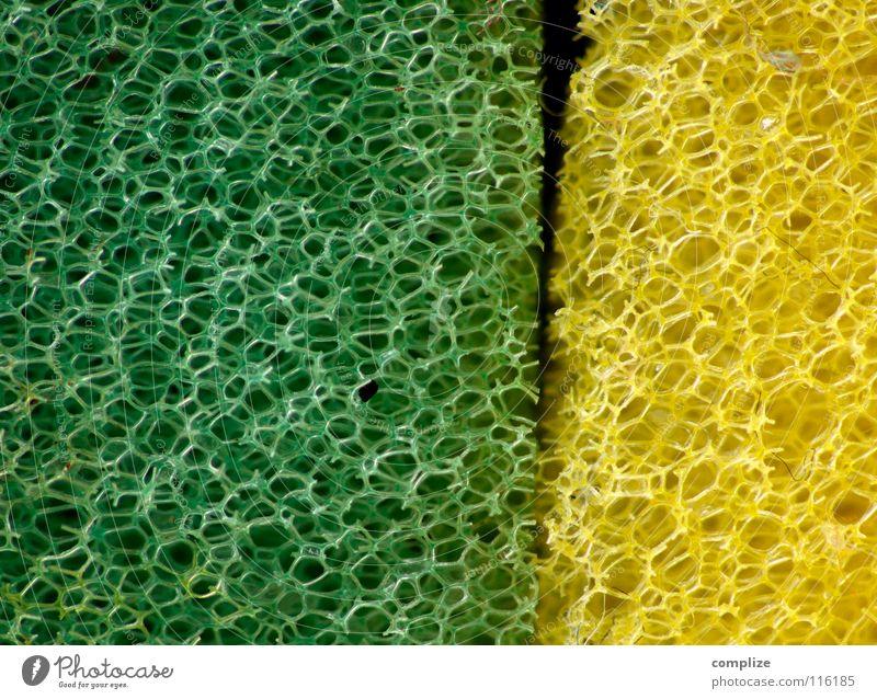 Du alter Schwamm Du! grün gelb Farbe Bad Küche Netz Sauberkeit Reinigen außergewöhnlich Stoff obskur seltsam Vernetzung Haushalt Spalte Raumpfleger