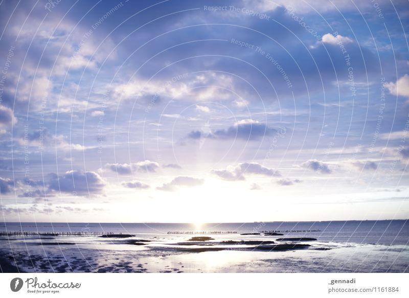 Watt is das schön Umwelt Landschaft Wasser Himmel Wolken Horizont Wetter Schönes Wetter Seeufer Nordsee blau violett Wattenmeer Landschaftsformen Deutschland