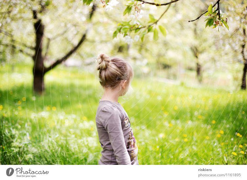 wiesenkind Mensch Kind Natur Sonne Erholung Landschaft ruhig Mädchen Umwelt Frühling Wiese natürlich feminin Garten träumen maskulin