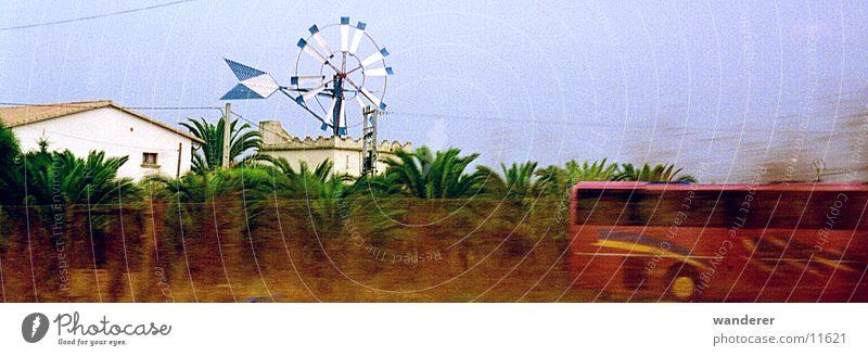 Schnellbus Bus Mallorca Windmühle