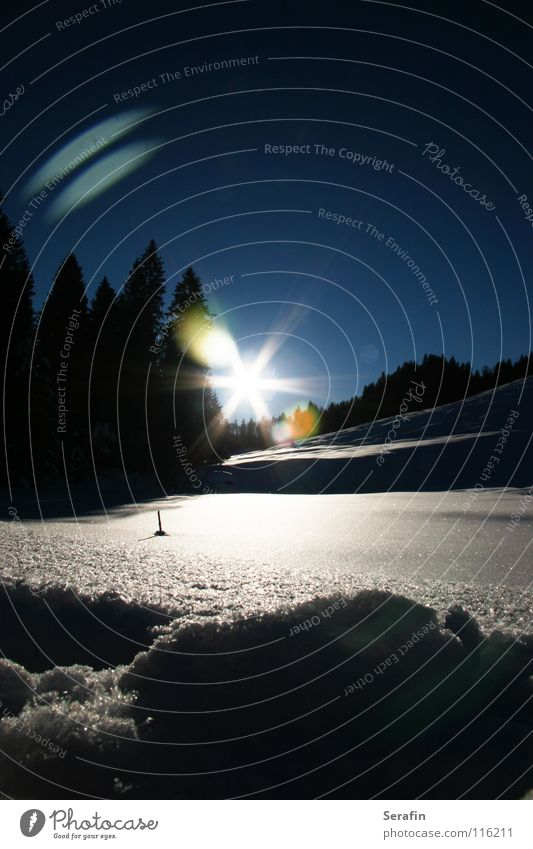 Märchenwinter Sonne Winter kalt Schnee Eis Jahreszeiten Dezember Nachmittag Bundesland Vorarlberg Nachmittagssonne