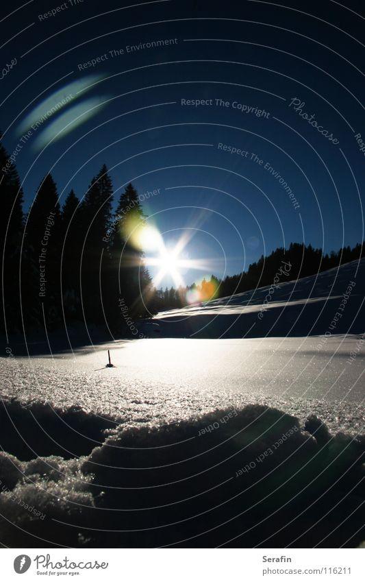 Märchenwinter Winter kalt Nachmittagssonne Dezember Jahreszeiten Bundesland Vorarlberg Schnee Eis Sonne Eiszauber