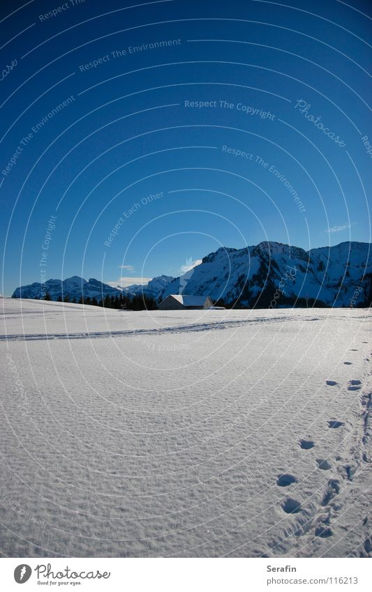 Hüttenzauber Winter kalt Schnee Wege & Pfade Eis Spuren Hütte Wintersport Alm Dezember Wintersonne