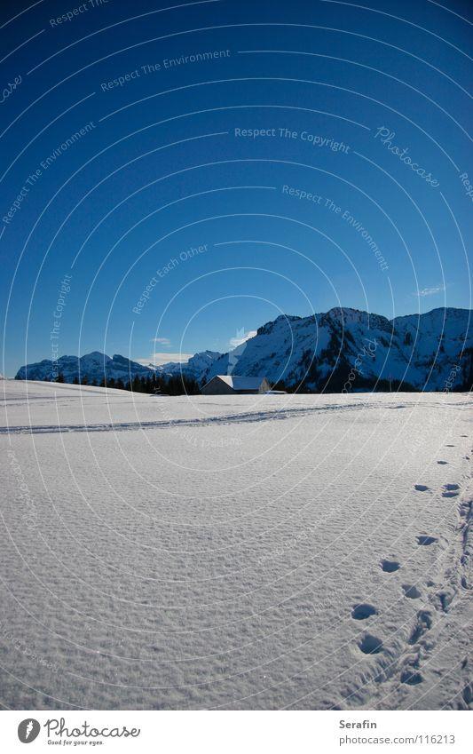 Hüttenzauber Winter kalt Schnee Wege & Pfade Eis Spuren Wintersport Alm Dezember Wintersonne