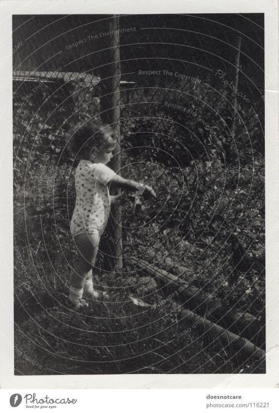 Zaunkind. Kind Kleinkind schwarz weiß grau Locken Vergangenheit Erinnerung Natur Schwarzweißfoto Achtziger Jahre DDR