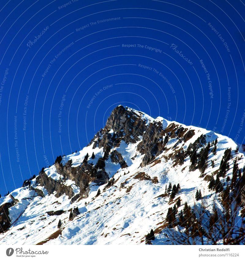 Gipfel Stein See Schneeschmelze Fichte Gipfelkreuz Winter Berge u. Gebirge Alpen Felsen Himmel blau Waldgrenze