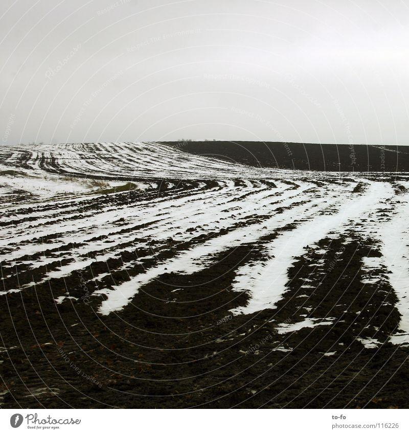 November 3 ruhig Einsamkeit kalt Schnee Herbst grau Feld trist