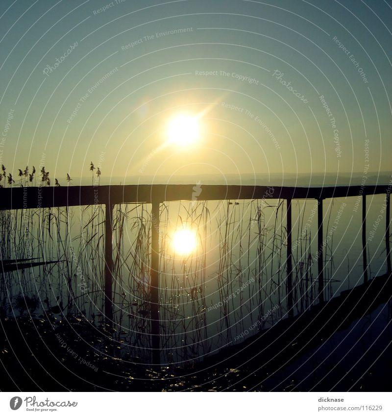 Endless Summer™ vol.02 See Steg Mann kalt Winter Schilfrohr Erholung ausschalten träumen vergessen Bayern planen Aufenthalt Reflexion & Spiegelung Sonne Typ