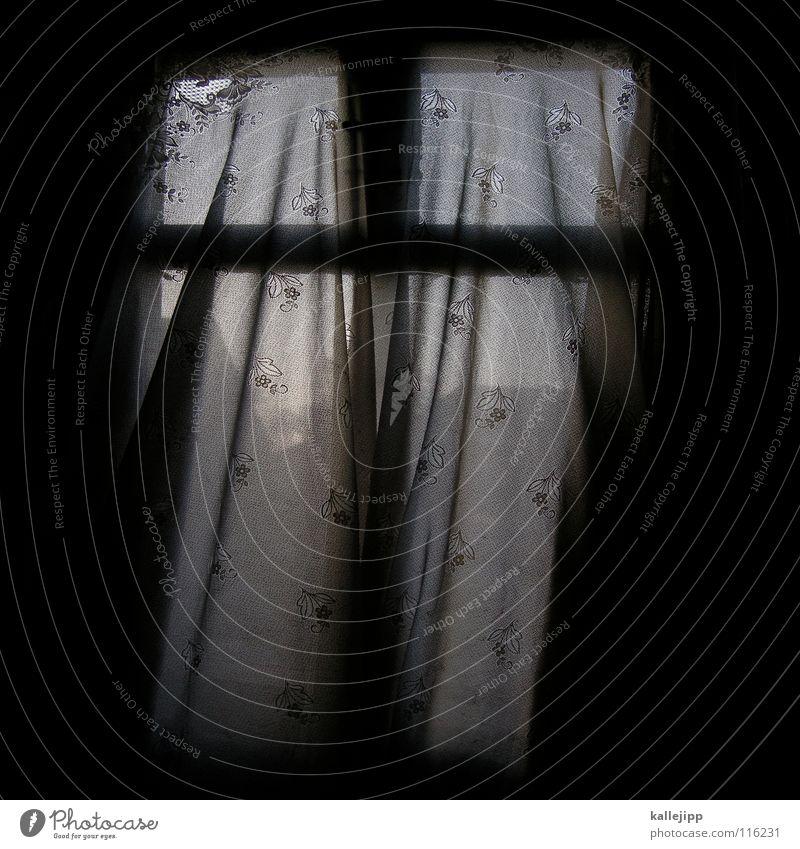 fensterkreuz Fenster Vorhang Blume verfallen Schleier Geister u. Gespenster Wohnung Haus Windzug kaputt Bauernhof Ruine Brandenburg Dekoration & Verzierung