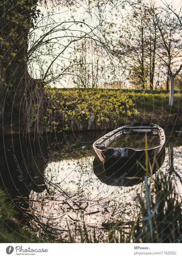 leak Umwelt Natur Wasser Efeu Farn Park Seeufer Flussufer Schifffahrt Fähre Fischerboot Ruderboot alt fluten Spree Dahme-Spreewald Märchenlandschaft