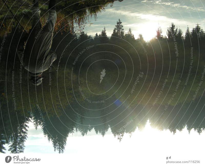 O.K., that's a bit strange now... See Reflexion & Spiegelung Wald Baum Tanne Fischer Gras verkehrt grün Herbst Sonne Angeln blau Fischerrute