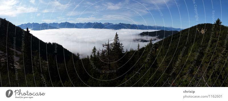 Nebel im Tal Umwelt Natur Landschaft Himmel Wolken Horizont Pflanze Baum Hügel Alpen Berge u. Gebirge Gipfel Gefühle Freude Glück Abenteuer entdecken Erholung