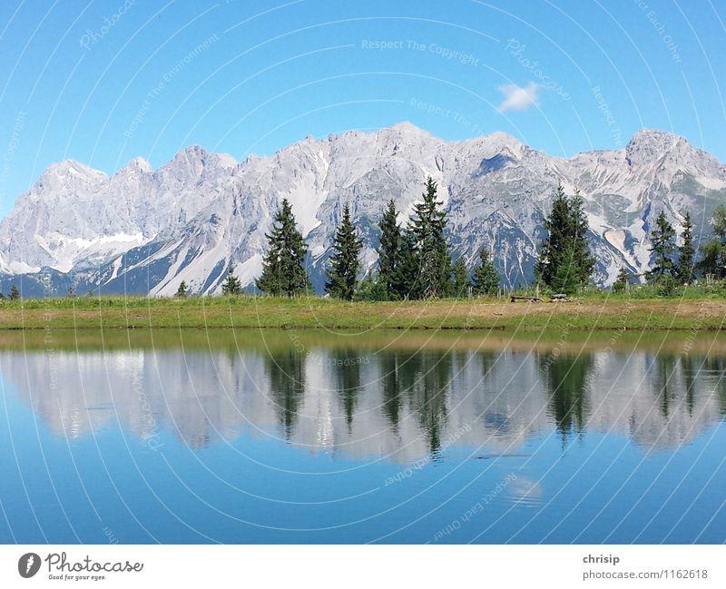 Dachstein I Umwelt Natur Landschaft Wasser Himmel Wolken Sonnenlicht Klima Wetter Schönes Wetter Baum Gras Felsen Alpen Berge u. Gebirge Gipfel Seeufer Teich