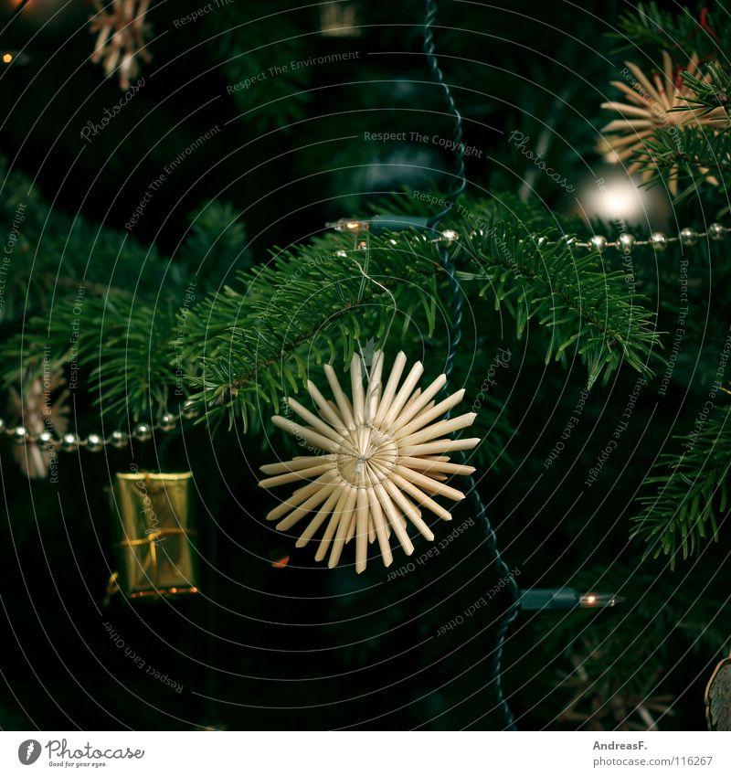 alle jahre wieder II Weihnachtsbaum Weihnachten & Advent Weihnachtsdekoration Baum Nadelbaum Tanne Lichterkette grün Winter Christbaumkugel verschönern Dezember
