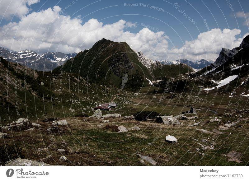 Weite Flur Umwelt Natur Landschaft Himmel Wolken Sommer Schönes Wetter Pflanze Baum Blume Gras Sträucher Felsen Alpen Berge u. Gebirge Gipfel