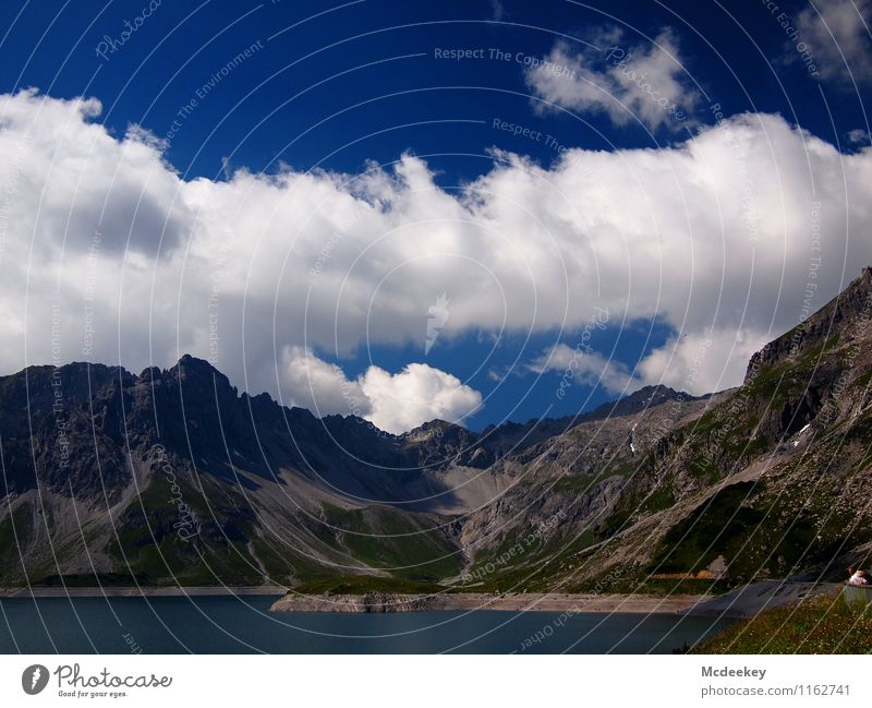 Wolkenbahnen Umwelt Natur Landschaft Pflanze Wasser Himmel Sonne Sommer Schönes Wetter Wärme Gras Sträucher Grünpflanze Wildpflanze Alpen Berge u. Gebirge