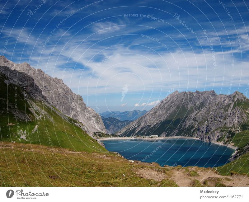 Seeidylle Himmel Natur blau Pflanze grün Sommer Wasser weiß Sonne Landschaft Wolken Ferne Berge u. Gebirge Umwelt Wärme Wiese