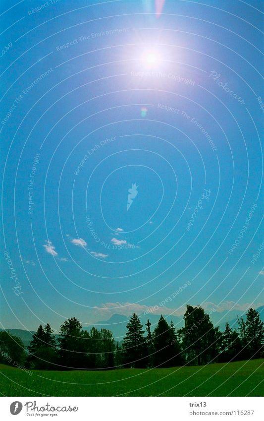 friedliche welt Himmel weiß Sonne grün blau Sommer ruhig Wolken Wald Wiese Landschaft Rasen Tanne Schönes Wetter friedlich