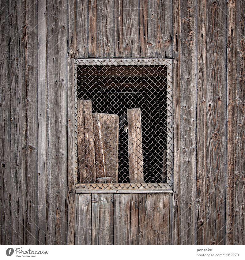 ausgangssperre Hütte Fenster Holz Balken Maschendraht Holzfassade Holzhütte warten gefangen anlehnen ruhig Farbfoto Gedeckte Farben Außenaufnahme Nahaufnahme