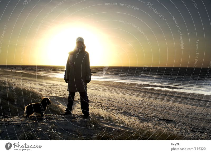 Nordsee Frau Mensch Wasser Himmel Sonne Meer Winter Strand Herbst Hund Sand Wellen Küste HDR Dänemark