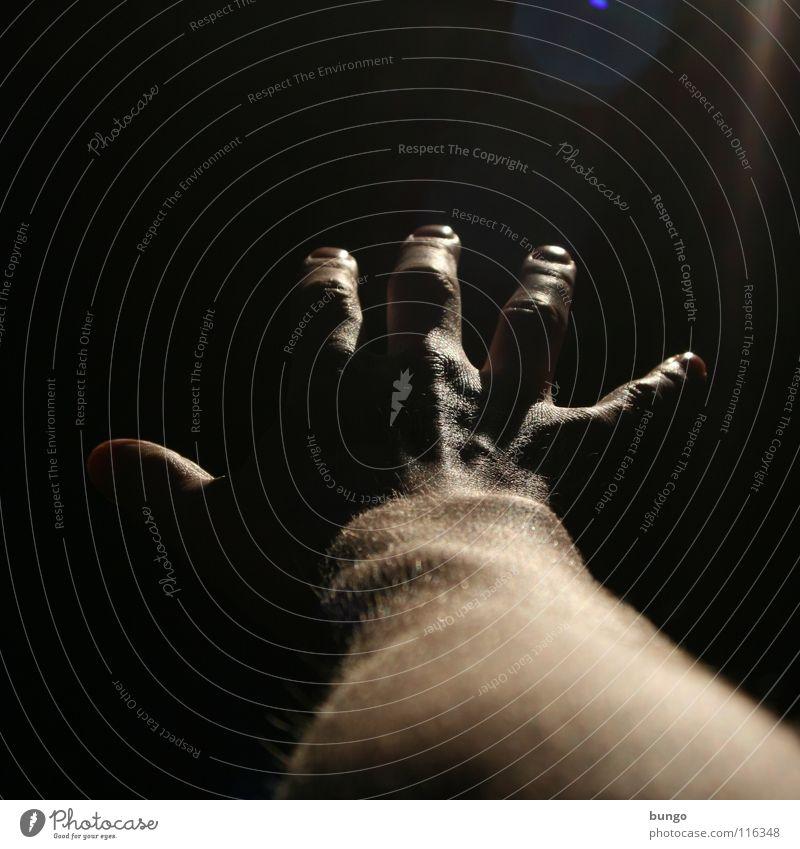 2008 dunkel Hand Finger Mann Zukunft neu geheimnisvoll fremd entdecken Sorge Angst träumen Alptraum Nacht Licht ungewiss Vorsicht Gefühle Reichweite
