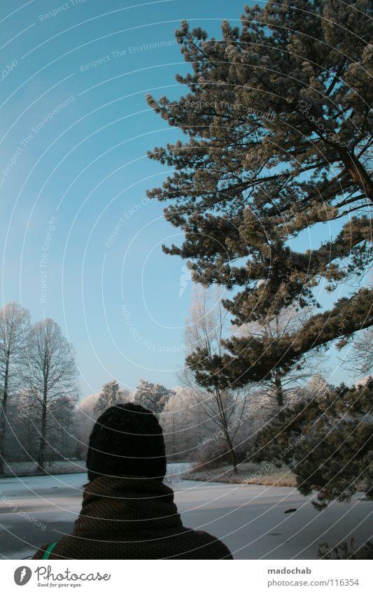 MILA MOJA KOCHANA Mensch Frau Himmel Natur Ferien & Urlaub & Reisen schön Baum Freude Winter Wald Erholung Landschaft Ferne kalt Schnee Wege & Pfade