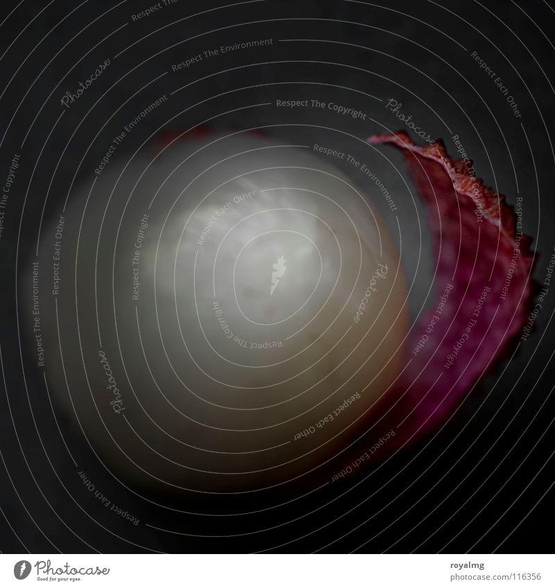 #50 - litschi II schwarz Ernährung braun Lebensmittel Frucht violett Vergänglichkeit Perle Vitamin Schalen & Schüsseln Fruchtfleisch Patina Lychee