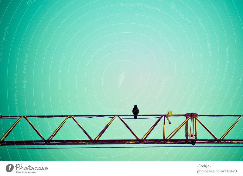 Solitude Kran Vogel Einsamkeit grün türkis Trauer Verzweiflung Industrie blau Spot.