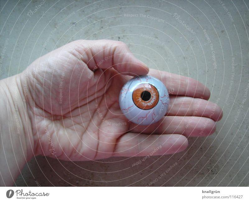 Sehen + Fühlen Hand Handlinie Pupille Vergänglichkeit obskur Auge Blick Gefühle Braunauge