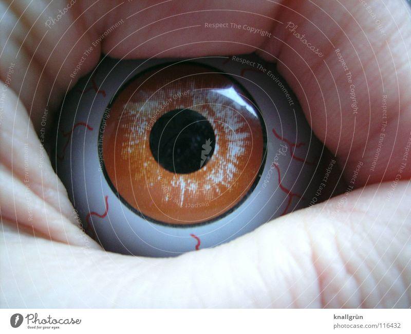 Böser Blick böse Pupille Wut Ärger obskur Auge