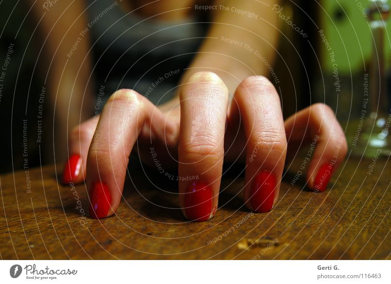 .oOo. Katze Frau Hand rot feminin Gefühle Holz Arme Haut Finger 5 fangen Spinne nehmen greifen Maserung