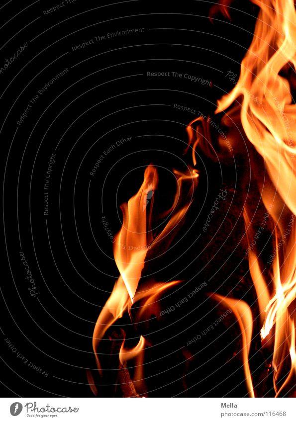 Feuer! heiß Physik Kaminfeuer gemütlich löschen gefährlich liegen brennen Holz Klotz alternativ ökologisch ökonomisch heizen Brand Sicherheit Winter Flamme