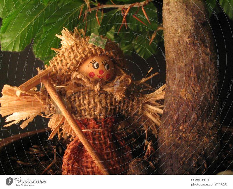 Vogelscheuche Baum Blatt Baumstamm Miniatur Vogelscheuche