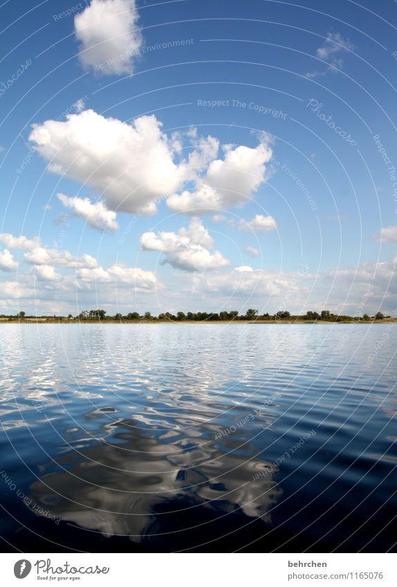 heiter bis wolkig Himmel Natur Ferien & Urlaub & Reisen blau schön Sommer Wasser Baum Erholung Landschaft Wolken Ferne Frühling Küste Freiheit Schwimmen & Baden
