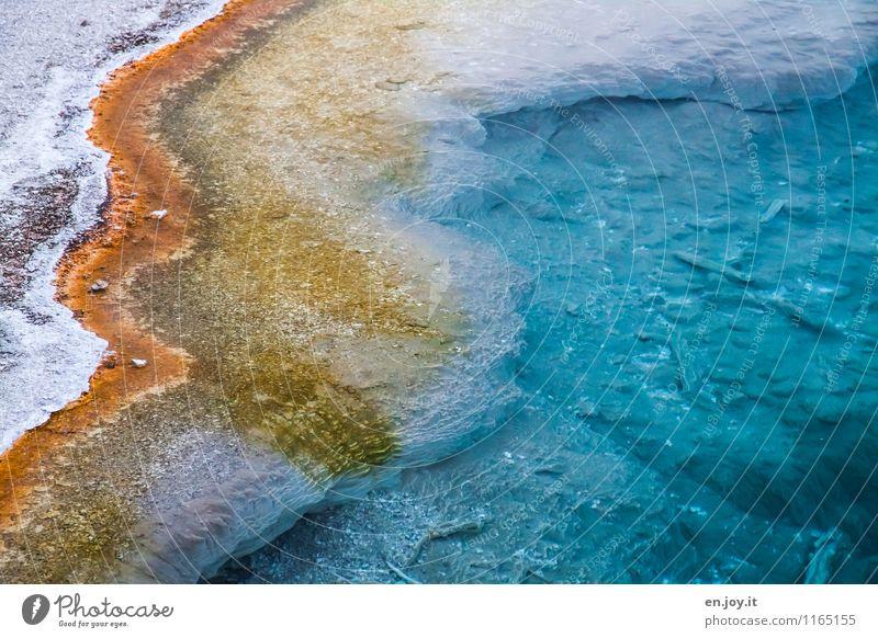 Das Leben ist bunt Ferien & Urlaub & Reisen Tourismus Umwelt Natur Landschaft Tier Urelemente Wasser Vulkan Heisse Quellen Geothermik Bakterien außergewöhnlich