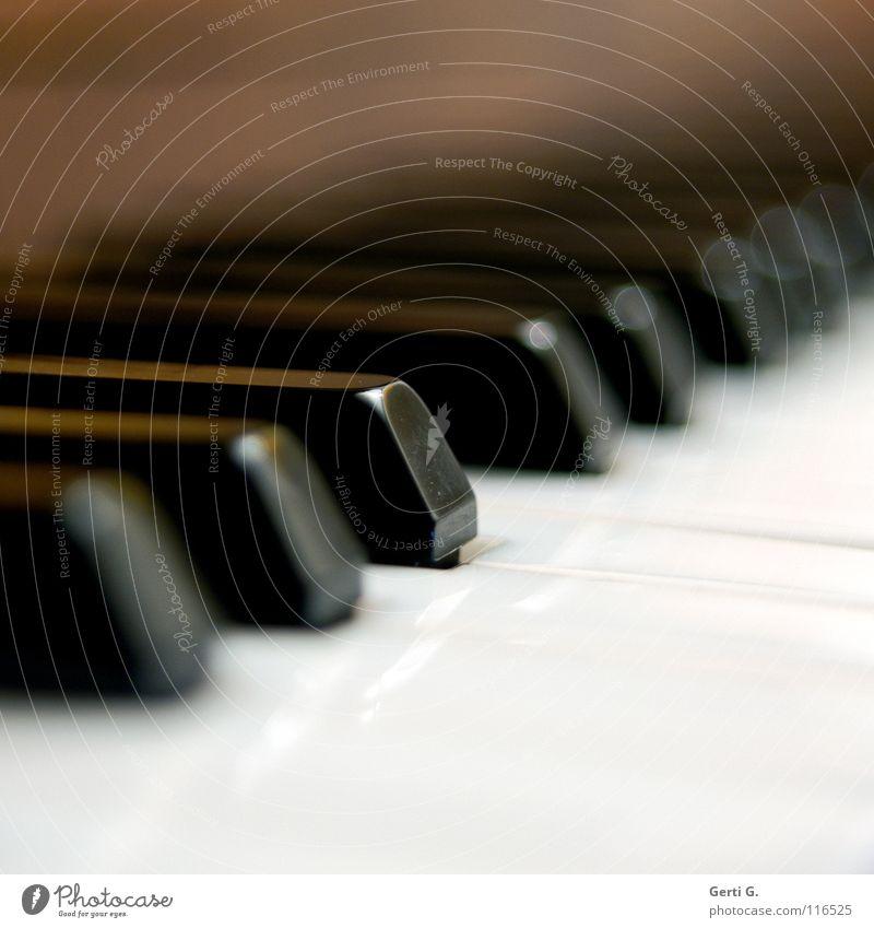 if I had a Hämmer Detailaufnahme Spielen Entertainment Musik Musiker Klavier Flügel Kunststoff schwarz weiß Konzentration Anschlag Tasteninstrumente Klaviatur