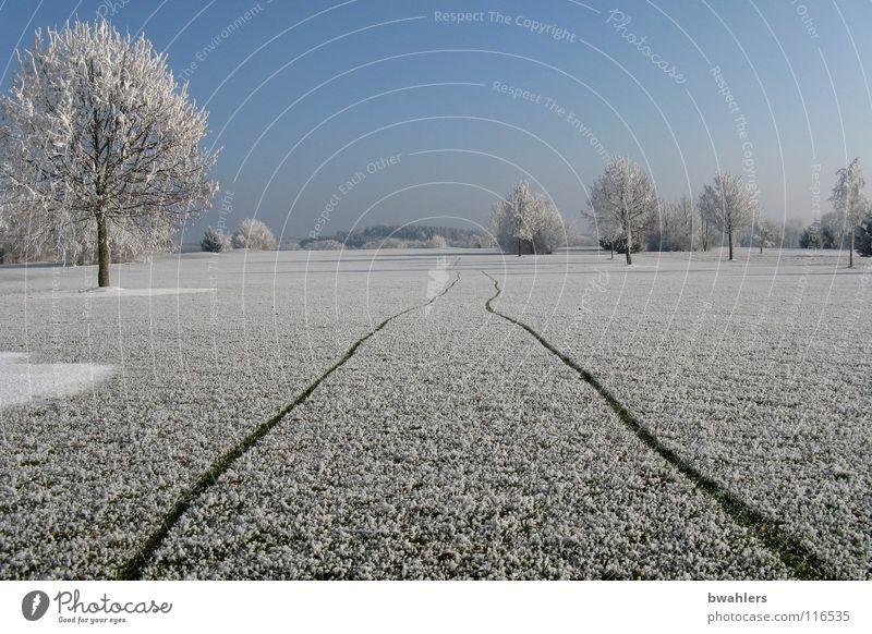 frostige Spur kalt Winter Raureif Einsamkeit weiß schön Baum Ravensburg Strukturen & Formen Schnee Eis Spuren laufen Landschaft Himmel Frost