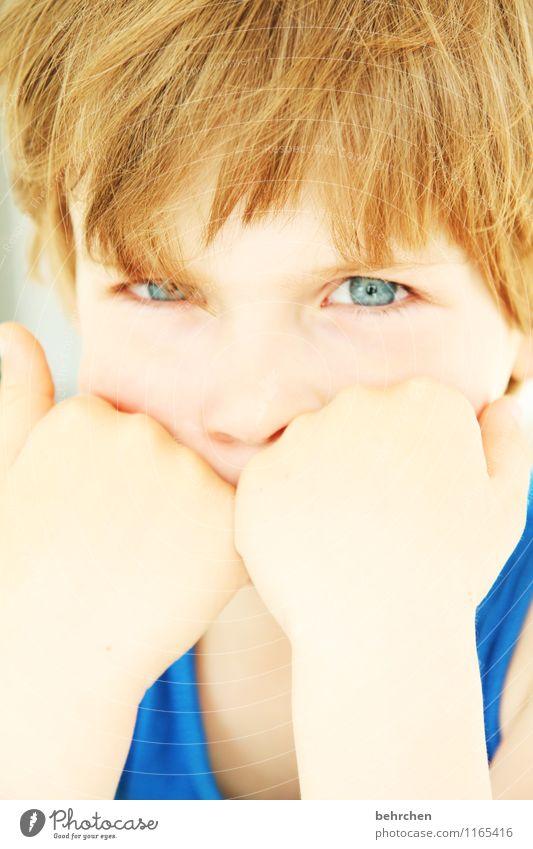 schau mir in die augen, kleines... Kind Junge Kindheit Haut Kopf Haare & Frisuren Gesicht Auge Nase Arme Hand 3-8 Jahre blond langhaarig beobachten Blick