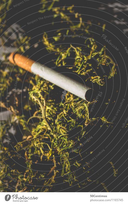 Cannabis als Rauschmittel Rauchen Zigarette Hanf Industriehanf ruhig gefährlich Drogensucht Duft Erfahrung Erholung Frustration bedrohlich Verbote Farbfoto