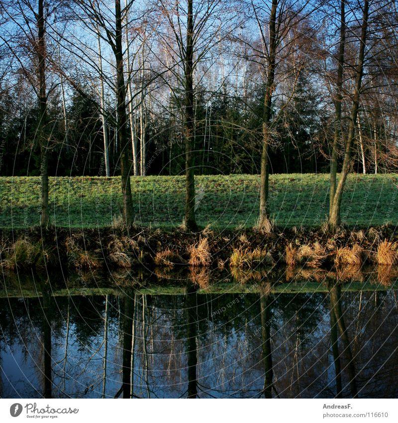 jetzt fahrn wir übern see Natur Wasser Baum grün blau Herbst Linie See Fluss Spiegel 5 Flussufer Geometrie Bach Symmetrie Deich