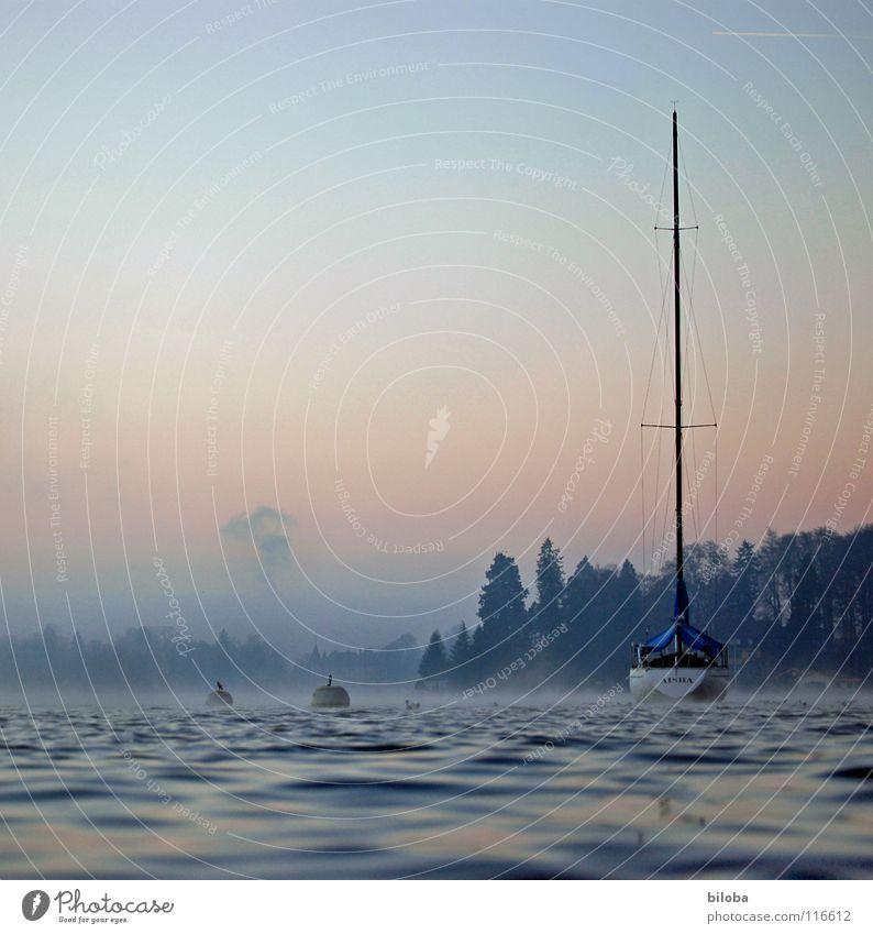 Boat Wasserfahrzeug teuer wiegen Wellen Segelboot kalt tief See Wald Nebel Stimmung unberührt harmonisch liquide Winter Schifffahrt ruhig water wather Himmel
