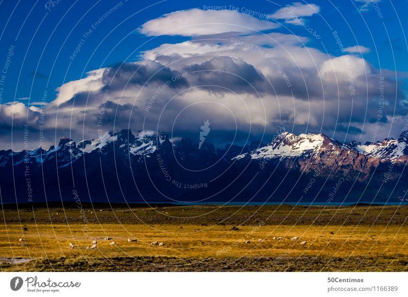 the alps in Patagonia Himmel Ferien & Urlaub & Reisen Sommer Landschaft Erholung Tier Winter Ferne Berge u. Gebirge Herbst Frühling Schnee Tourismus Freiheit