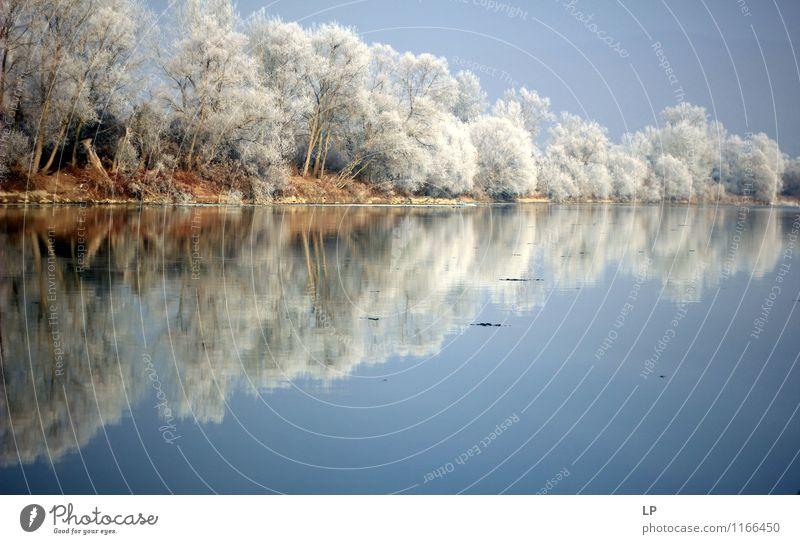 Flussufer Natur blau weiß Wasser Baum Landschaft Wald Küste braun glänzend Wetter Eis Luft Erde Schönes Wetter Frost