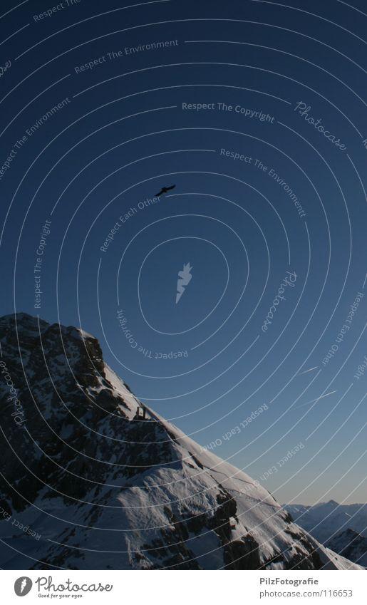 Vogelperspektive Himmel blau Winter schwarz kalt Berge u. Gebirge Schnee fliegen Stein braun Felsen Eis frei Perspektive Aussicht