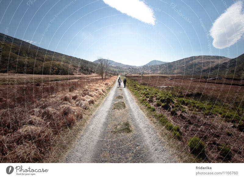 wandern in irland Mensch 2 Wolken Frühling Dürre Wildpflanze Wiese Feld Hügel Berge u. Gebirge Wege & Pfade Rucksack Wanderschuhe gehen tragen Zusammensein