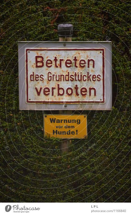 Grenzposten Hund alt Haus dunkel gehen Schilder & Markierungen Hinweisschild Zeichen geheimnisvoll Grenze Haustier Warnhinweis Schutzschild Fahnenmast Verbote