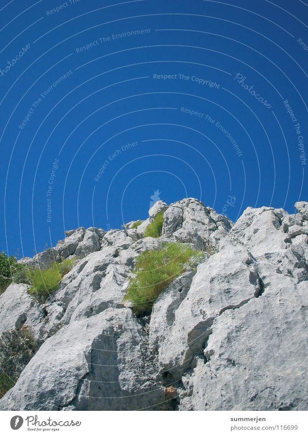 grey&blue&green grau grün Felsen himmelblau groß Ecke Top Klettern bewachsen hoch steinig Kroatien Berge u. Gebirge Himmel Stein Pflanze eckig oben aufwärts